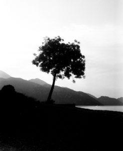 montenegro. skadarsko jezereo.